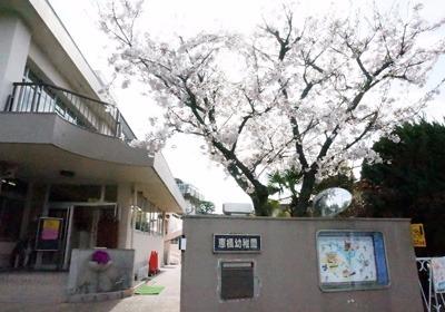 恵楓幼稚園の画像
