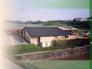野ばら第二保育園の画像