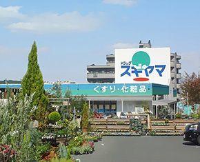 ドラッグスギヤマ高師店の画像
