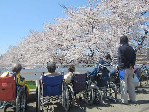木下の介護 たまプラーザショートステイ(介護職/ヘルパーの求人)の写真3枚目:季節の流れを感じながら、楽しく豊かな日々を送れるようサポートしています