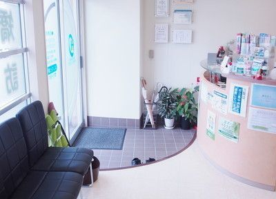 はしもと歯科医院(歯科衛生士の求人)の写真1枚目:光がさす明るい受付