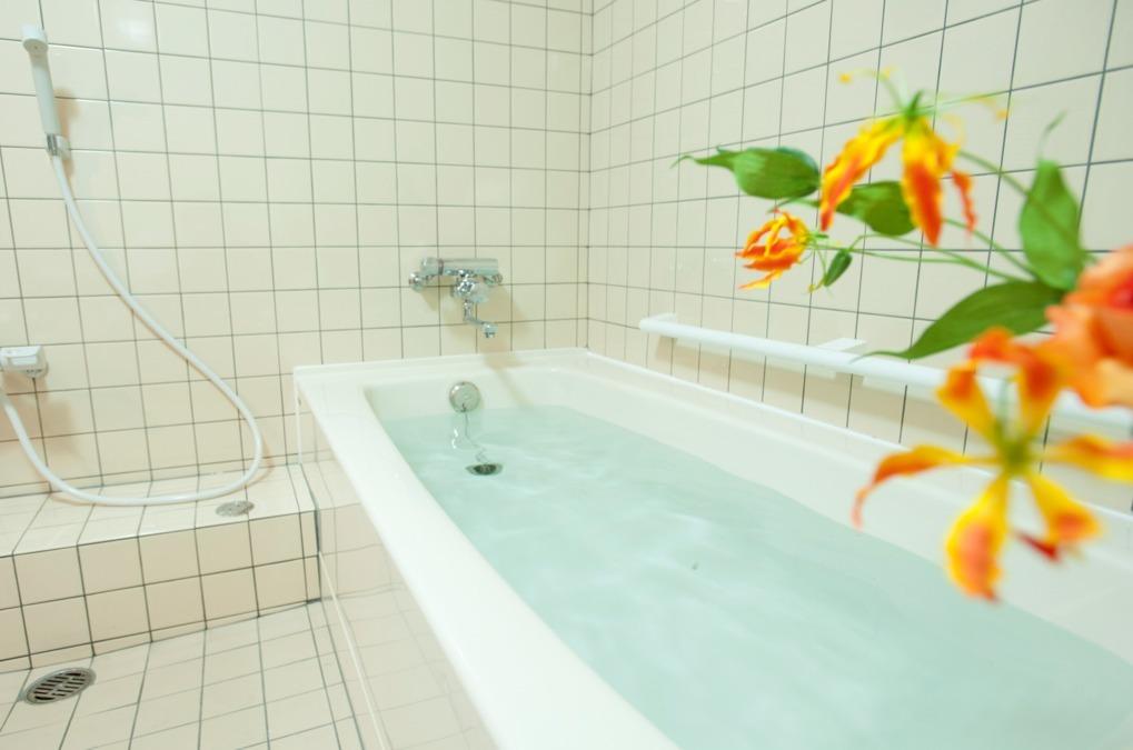 入浴デイサービス アムール仲池上の画像