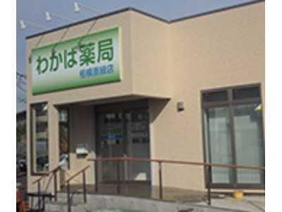わかば薬局相模原緑店(薬剤師の求人)の写真:皆さまに信頼され、愛される薬局を目指しています