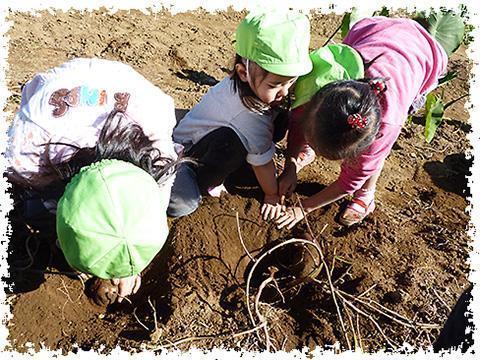 土と愛子供の家保育所第2(管理栄養士/栄養士の求人)の写真1枚目:土と愛は、子どもの集まりの中で子ども自身が生活していくことを願っています