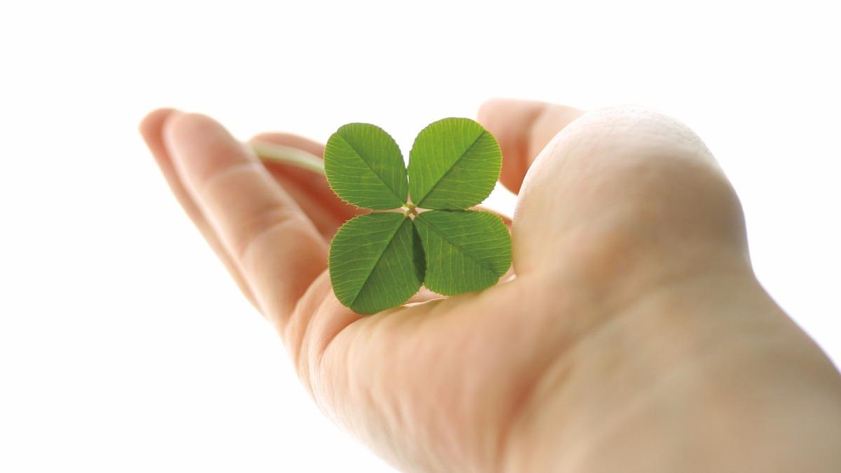 ケアポート岡山居宅介護支援事業所の写真:心からの介護を届けます