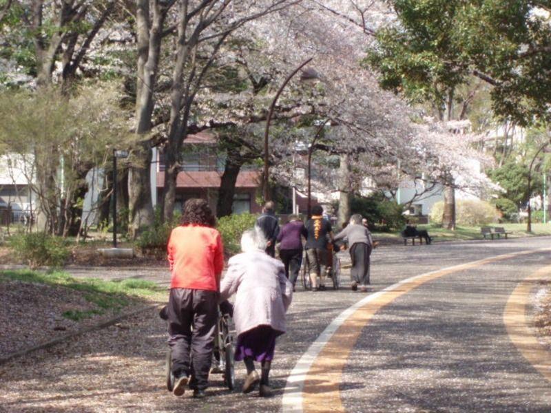 ウルルお散歩くらぶ駒沢公園の画像
