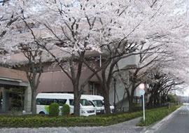サービスセンターさくら苑の画像