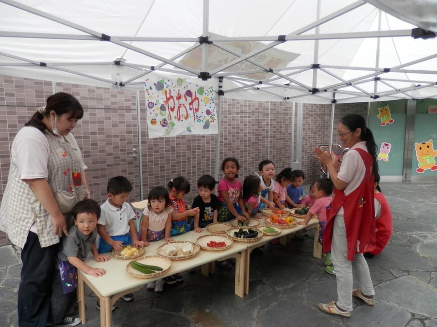 文京白山雲母保育園(仮称)【2020年04月01日オープン予定】(管理栄養士/栄養士の求人)の写真6枚目: