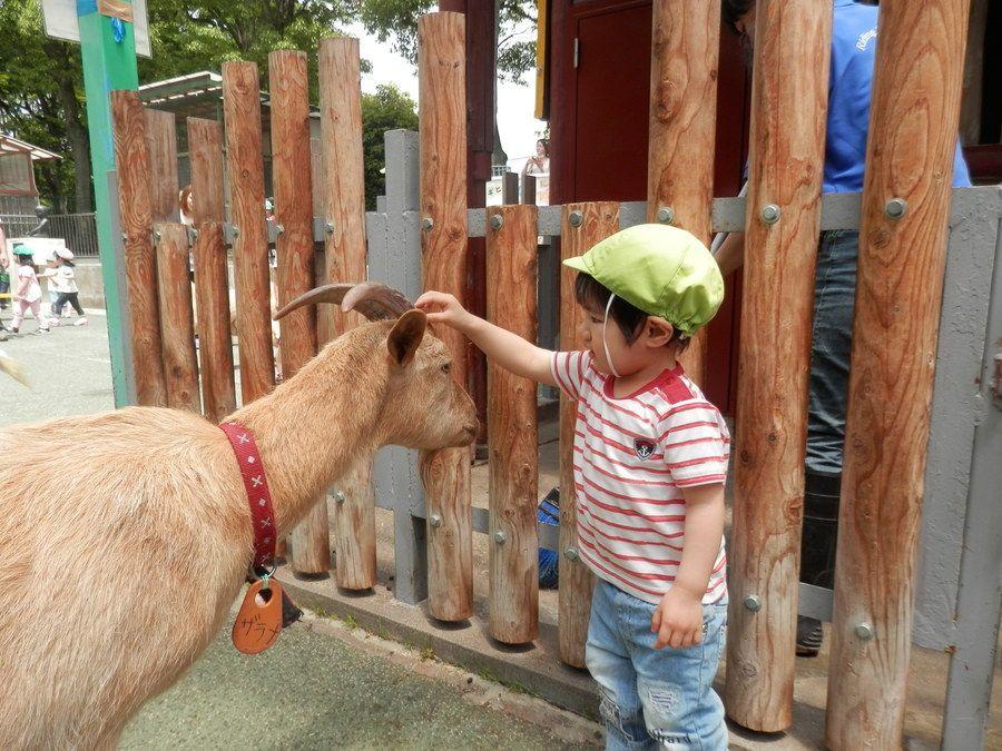 東千葉雲母保育園【2019年04月01日オープン】(保育士の求人)の写真6枚目:
