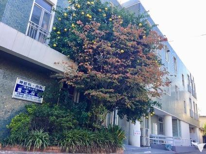 医療法人財団 富士病院の画像