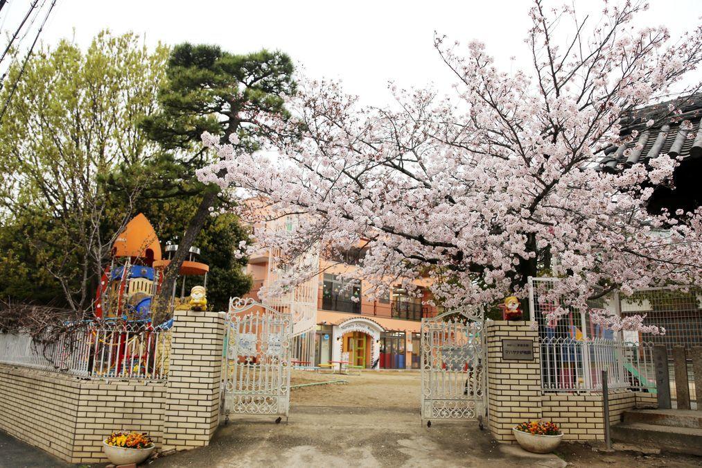 マハヤナ幼稚園の画像