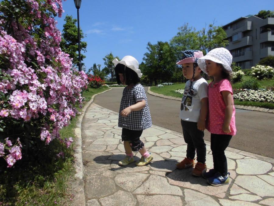 東松戸保育園の画像