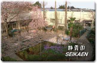 デイサービスセンター静霞園の画像