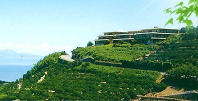デイサービスセンターみかんの丘の画像