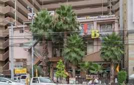 インターナショナルバイリンガルキンダーガーテンの写真1枚目:大きなやしの木が目印!とても個性的な外観です♪
