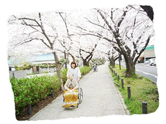 老人保健施設パーム春日井の画像