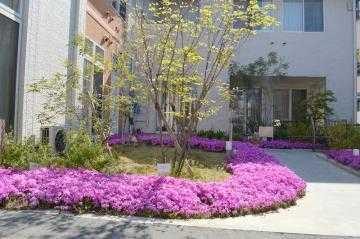 アプリシェイト豊中(サービス提供責任者の求人)の写真:広い庭園 春には芝桜が咲き誇ります