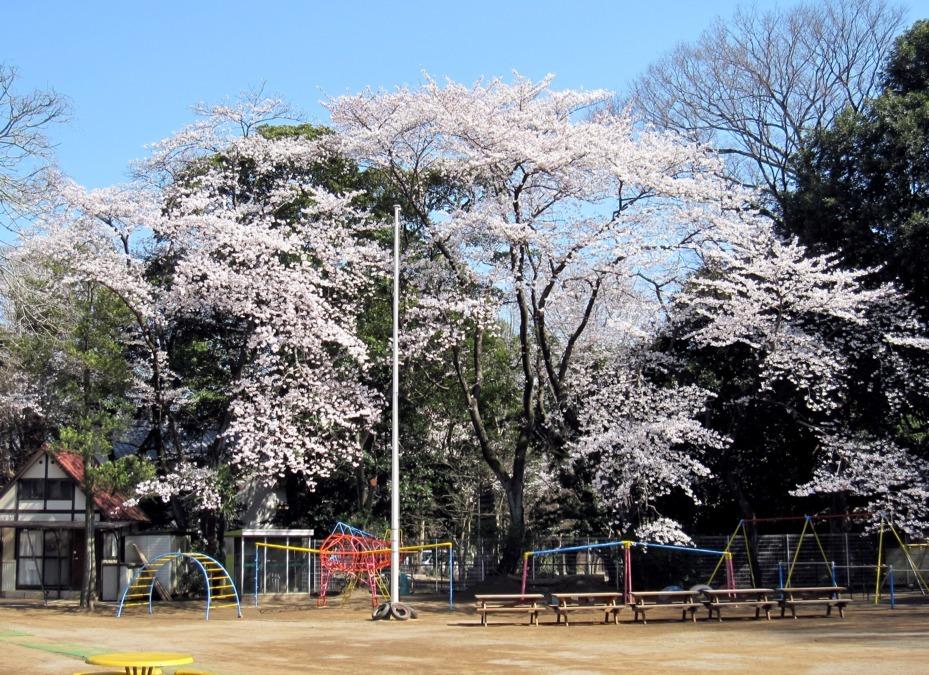真間山幼稚園の画像