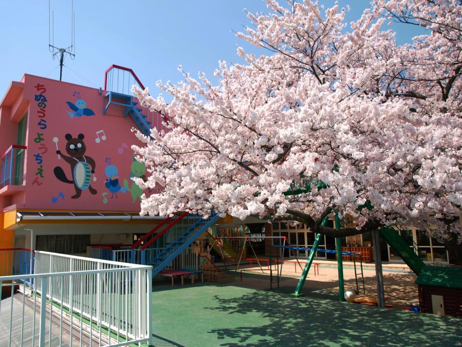 阪神御影小規模保育園(仮称)の画像