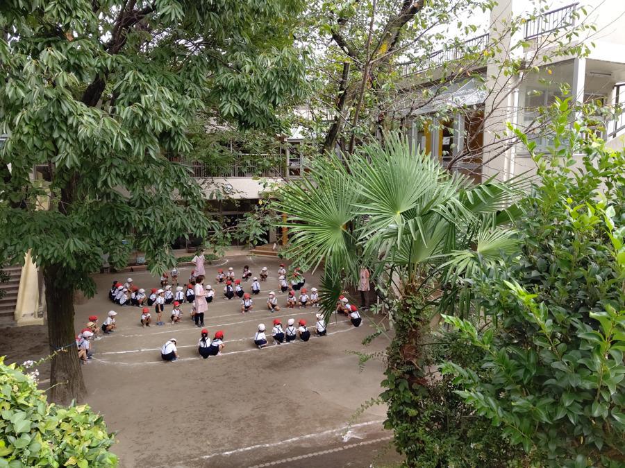 田端さくら幼稚園の画像