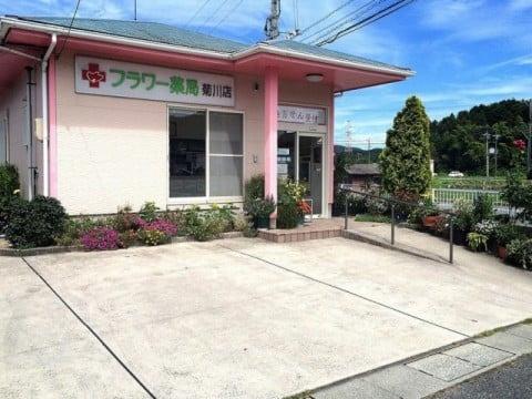 フラワー薬局 菊川店の画像