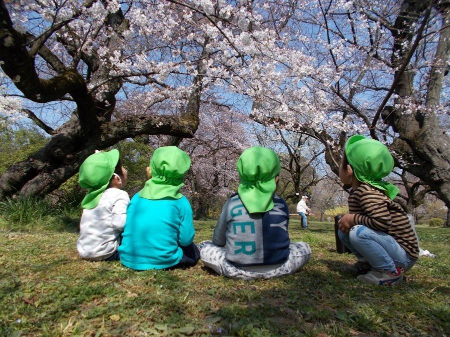 ちいさいおうち春日とモーハウスの画像