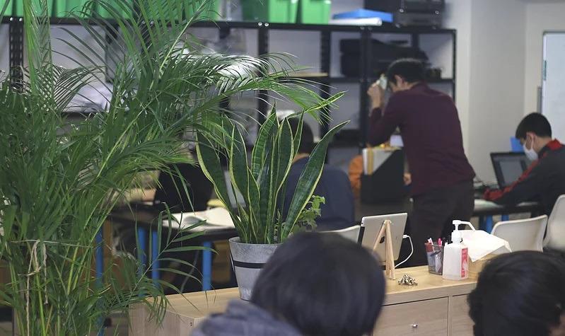 就労継続支援B型事業所 アイビーの画像