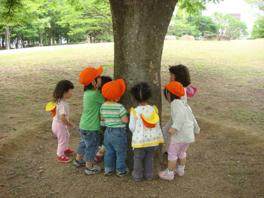千葉県こども病院 どんぐり保育園の画像