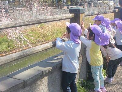 ミルキーホーム成田富里徳洲会病院内 ひまわり保育園