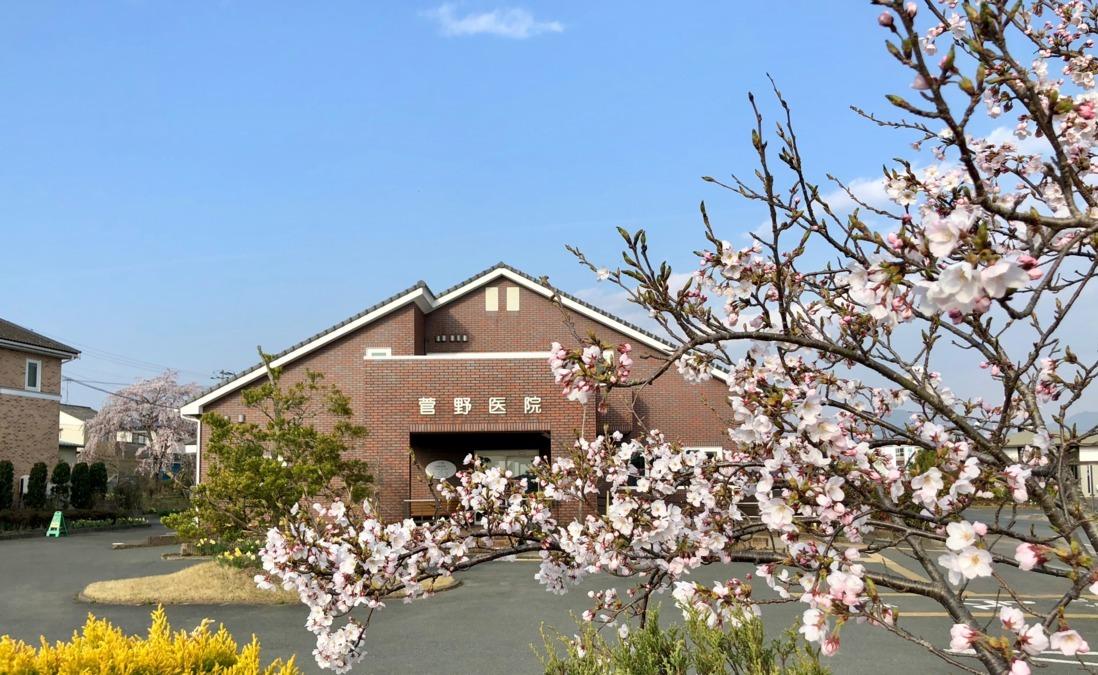 菅野医院の画像
