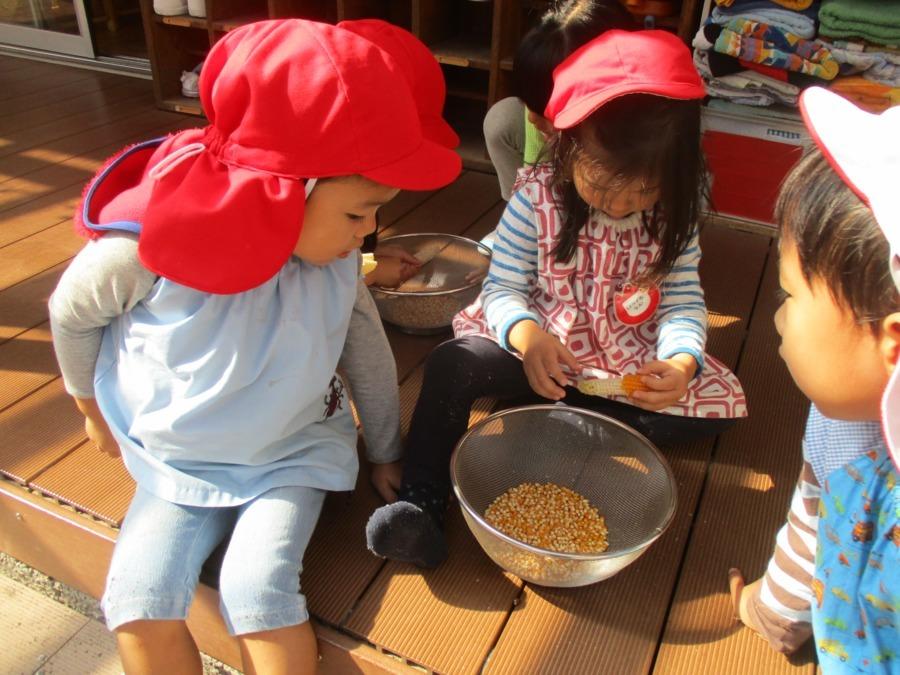 四谷新生教会付属 四谷新生幼稚園の画像
