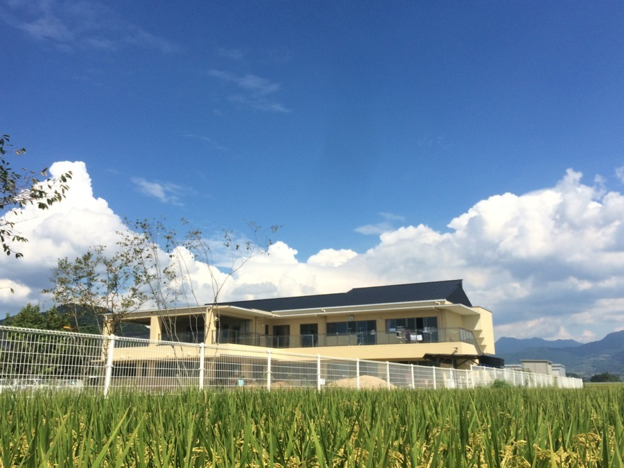 稲光園の画像