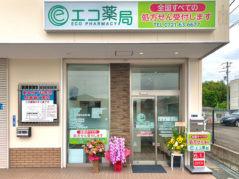 エコ薬局三日市町店の画像