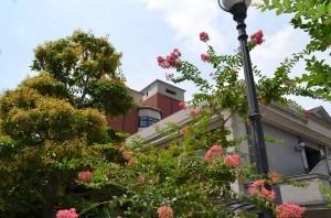 岡崎老人保健施設スクエアガーデンの画像