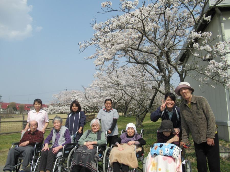 特別養護老人ホーム白寿荘(介護職/ヘルパーの求人)の写真1枚目:お花見です