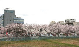 医療法人光ヶ丘病院の画像