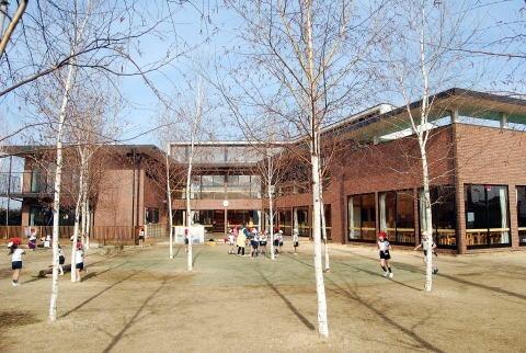 村山中藤保育園 白樺の画像