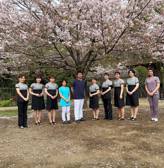 藤岡デンタルクリニック(歯科衛生士の求人)の写真1枚目:近所の公園でお花見をしながら集合写真を撮ります。毎年の恒例行事です(^-^)