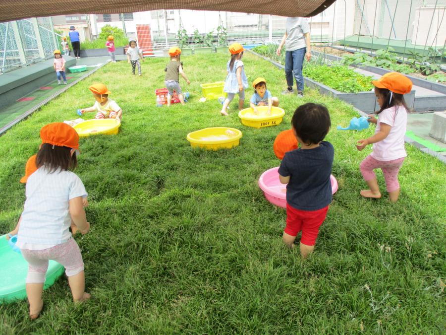東京都台東区認定こども園ことぶきこども園