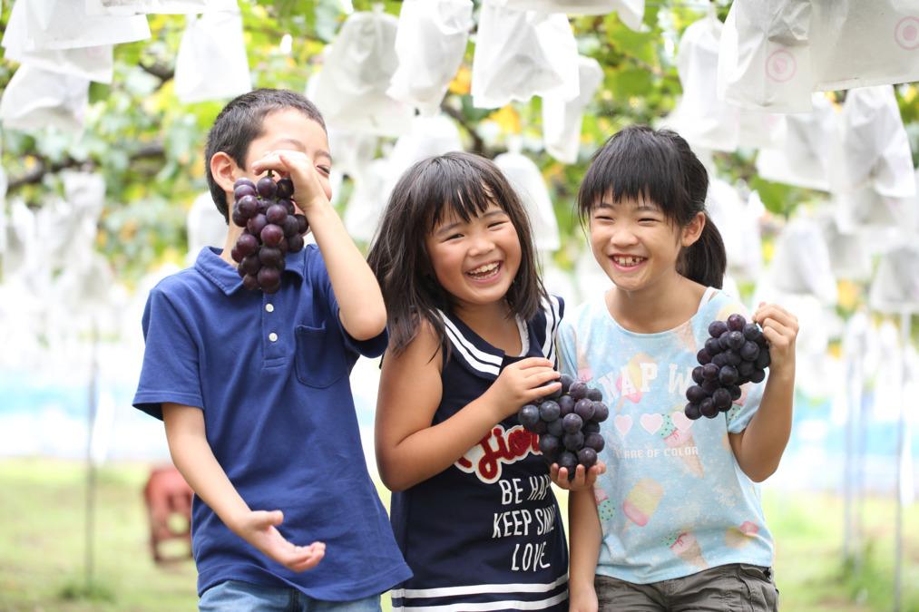 くりの木(児童発達支援事業所・放課後デイサービス)の画像