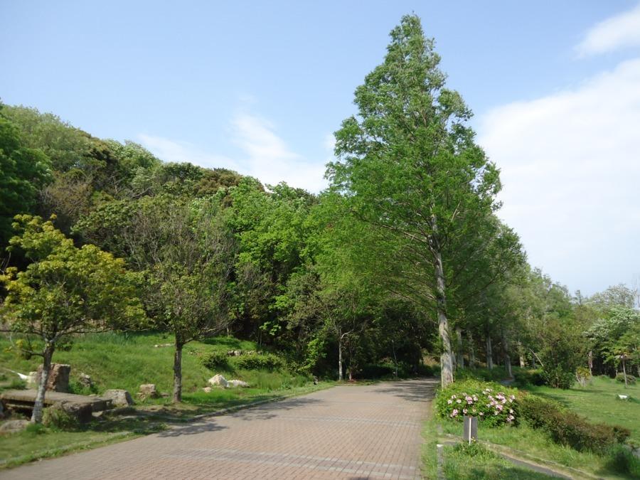 佐鳴湖畔ケアホームの画像