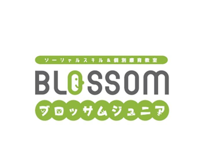 ブロッサムジュニア武庫之荘教室の画像