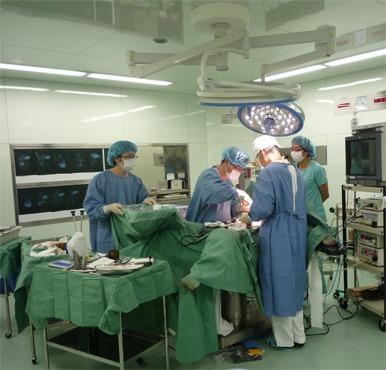 石垣病院(看護師/准看護師の求人)の写真: