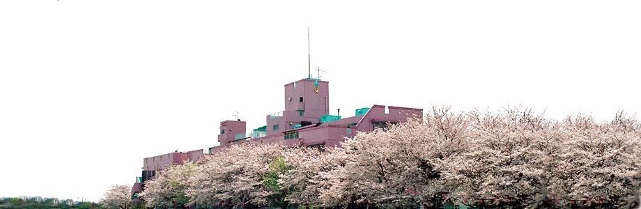 医療法人社団松和会 小板橋病院の画像