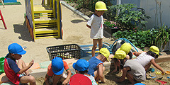 幼保連携型 認定こども園 三宝こども園の画像