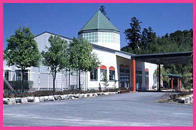 コスモス幼稚園の画像