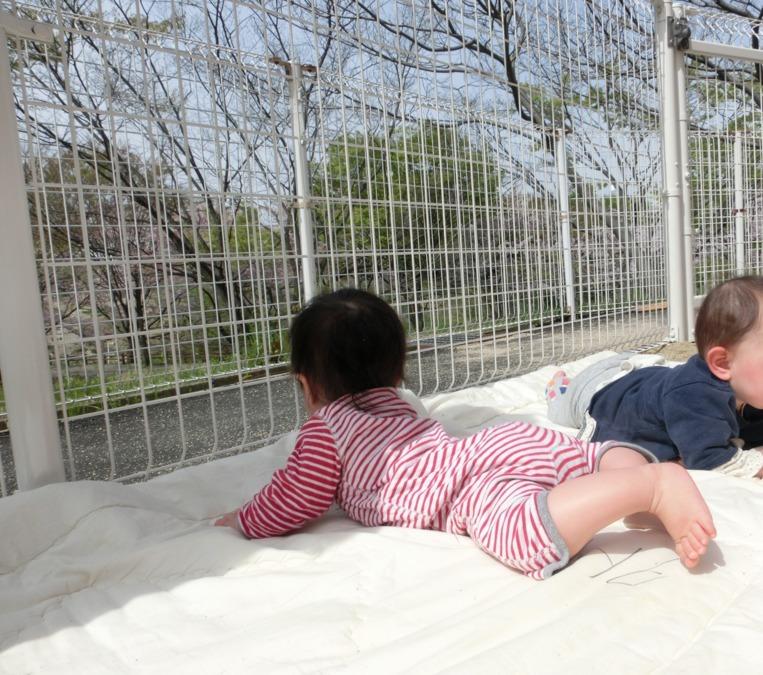 まきば保育園(大阪大学学内保育園)の画像