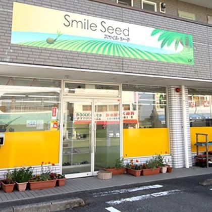 放課後等デイサービス  スマイルシード青島の画像