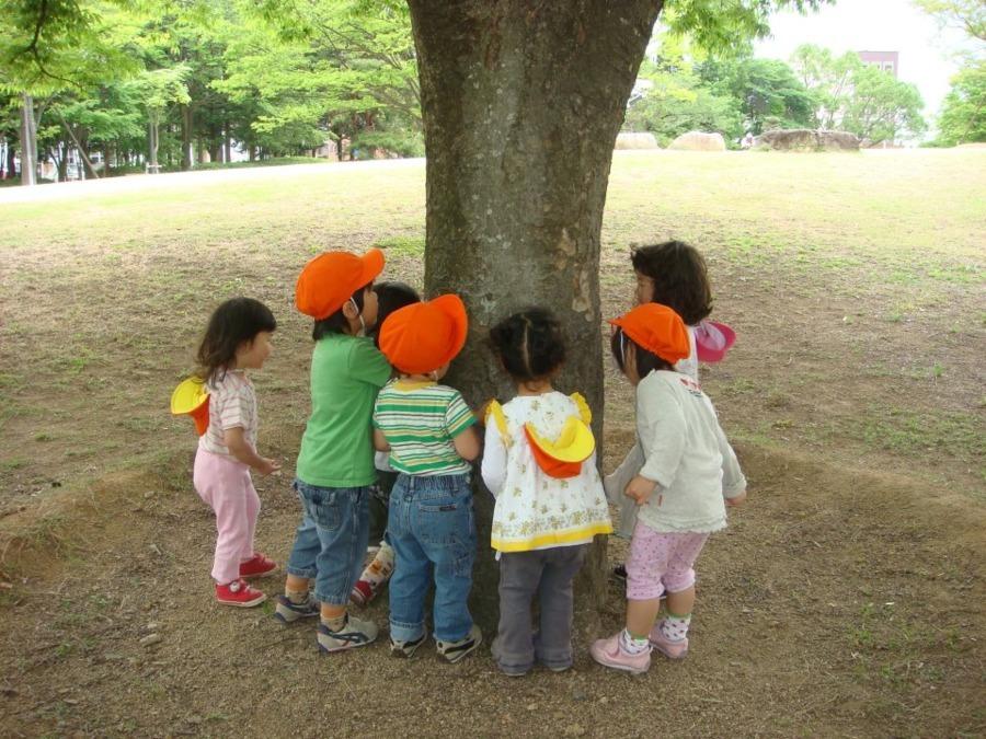 松村舞子浜幼児園の画像