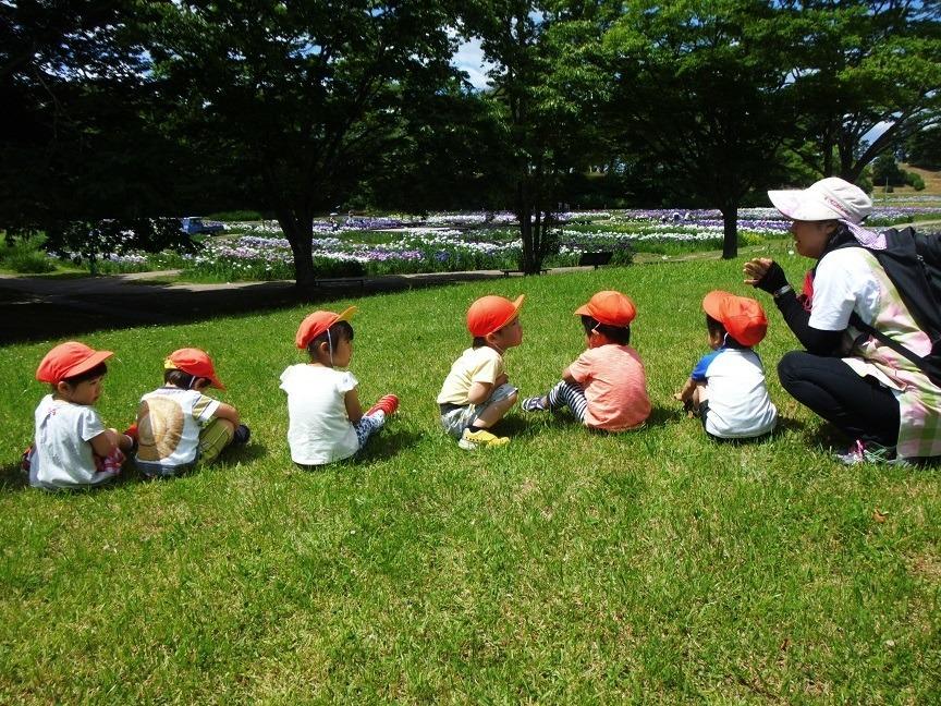 もりのなかま保育園 銀杏町園の画像